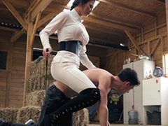 Brazzers HD: Horsing Buddy associate The Irrefutable Little shaver Jasmine Jae with the addition of Jordi El Niño Polla